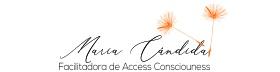 Curso de Barras de Access | Maria Cândida