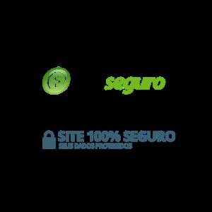 site-seguro-icone